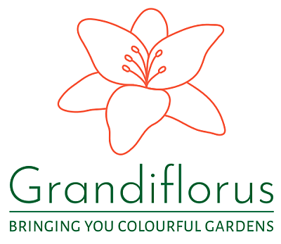 Garden plants delivered to your doorstep